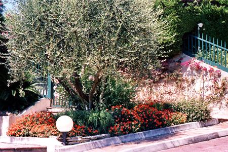 Didier sargiotto jardins for Entretien jardin copropriete