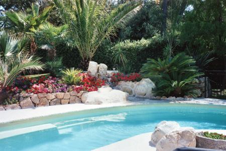 Didier sargiotto jardins for Piscine paysagee
